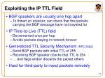 exploiting the ip ttl field