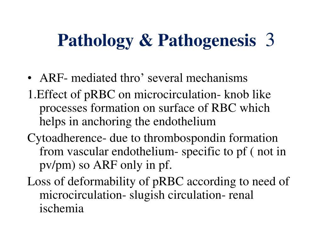 Pathology & Pathogenesis