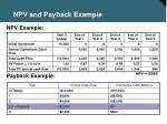 npv and payback example