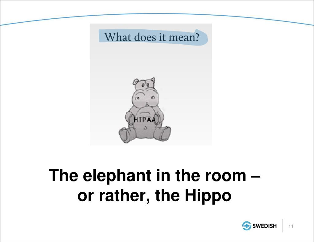 The elephant in the room –