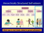 hierarchically structured self esteem9