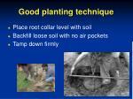 good planting technique38