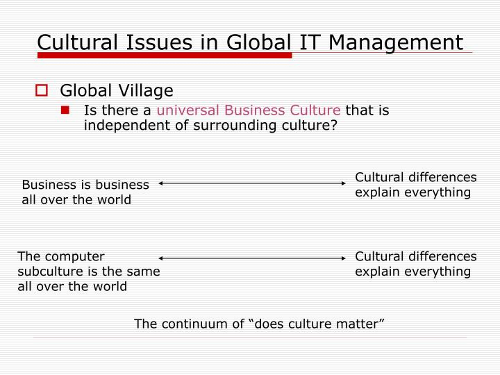 Cultural issues in global it management