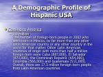a demographic profile of hispanic usa26