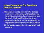 using fungicides for brambles disease control