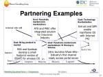 partnering examples