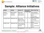 sample alliance initiatives