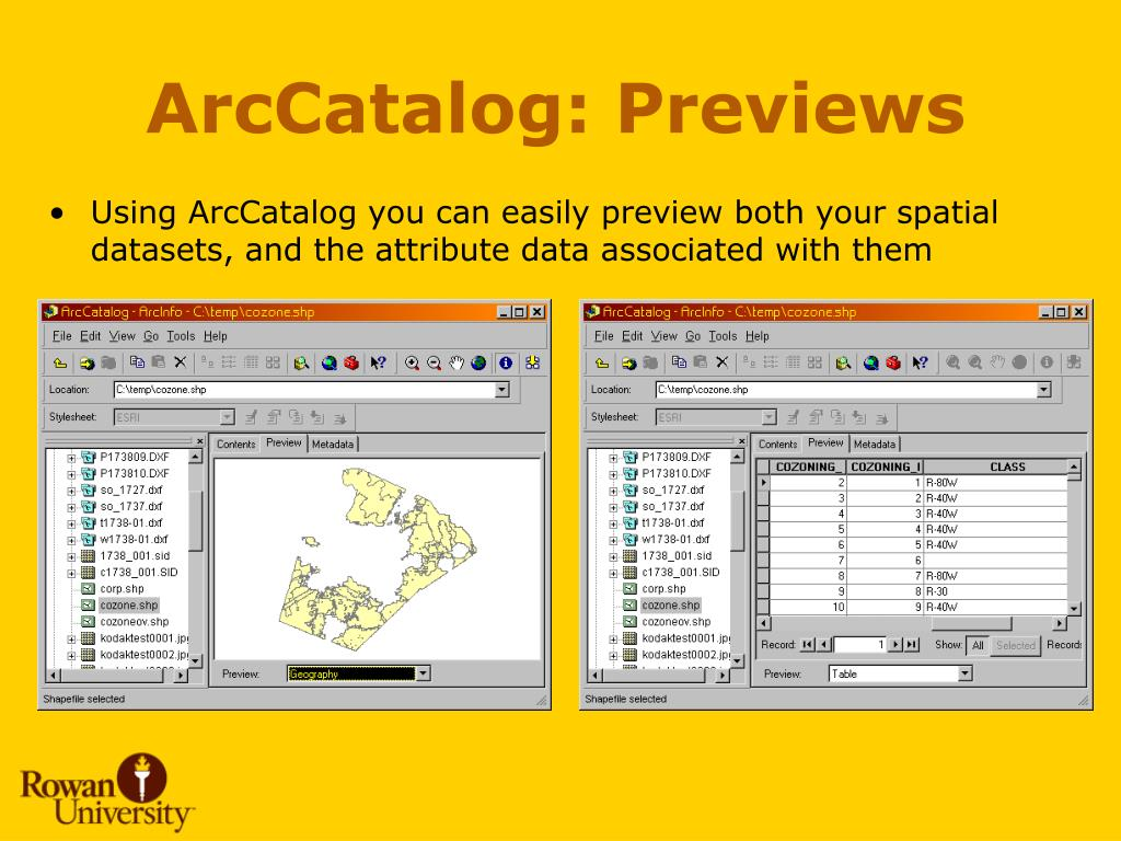 ArcCatalog: Previews