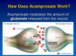 how does acamprosate work