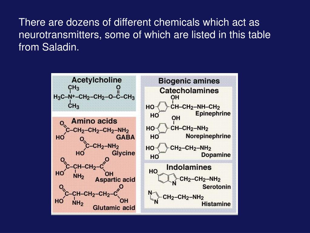 There are dozens of different chemicals which act as neurotransmitters, some of which are listed in this table from Saladin.