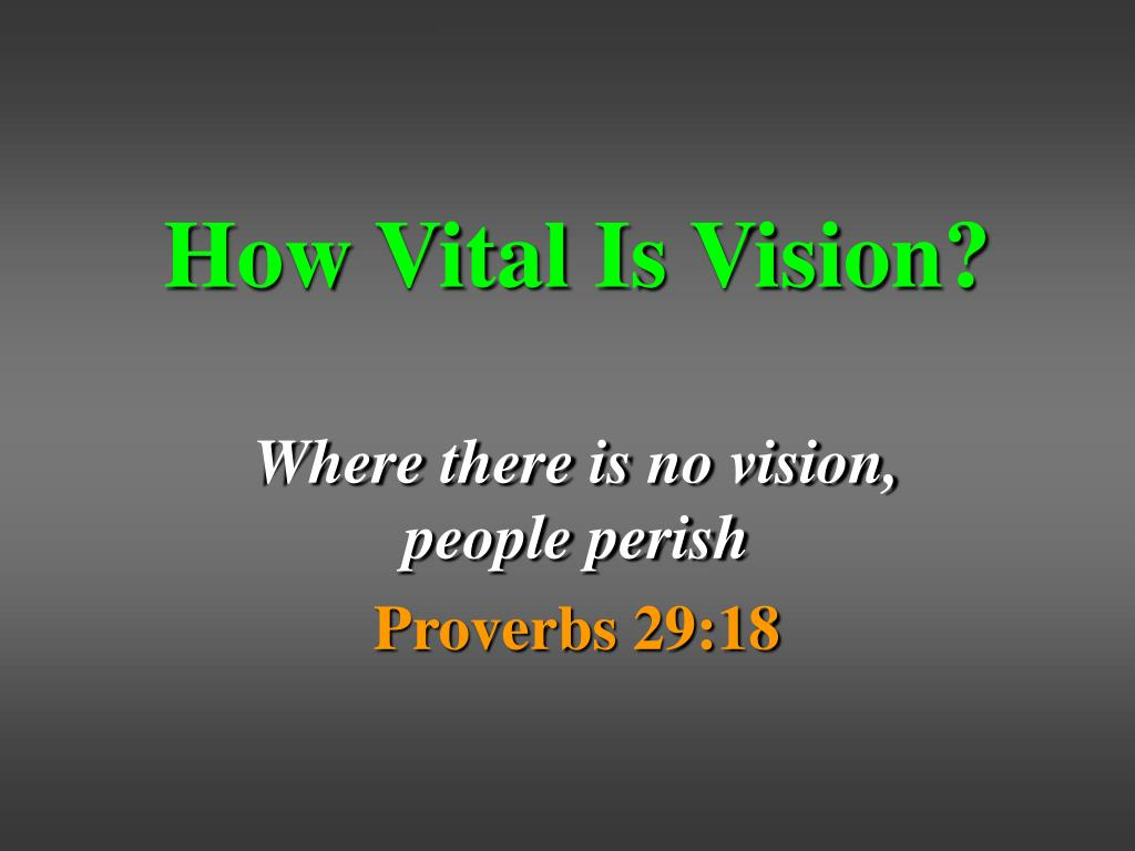 How Vital Is Vision?