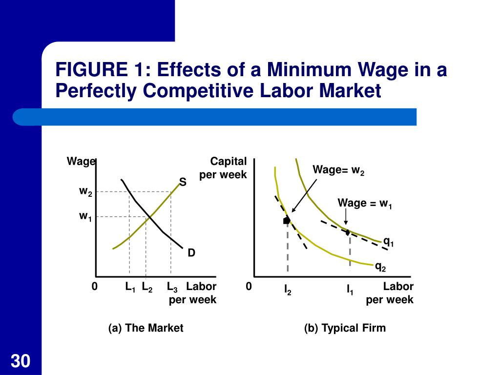 FIGURE 1: Effects of a Minimum Wage in a Perfectly Competitive Labor Market