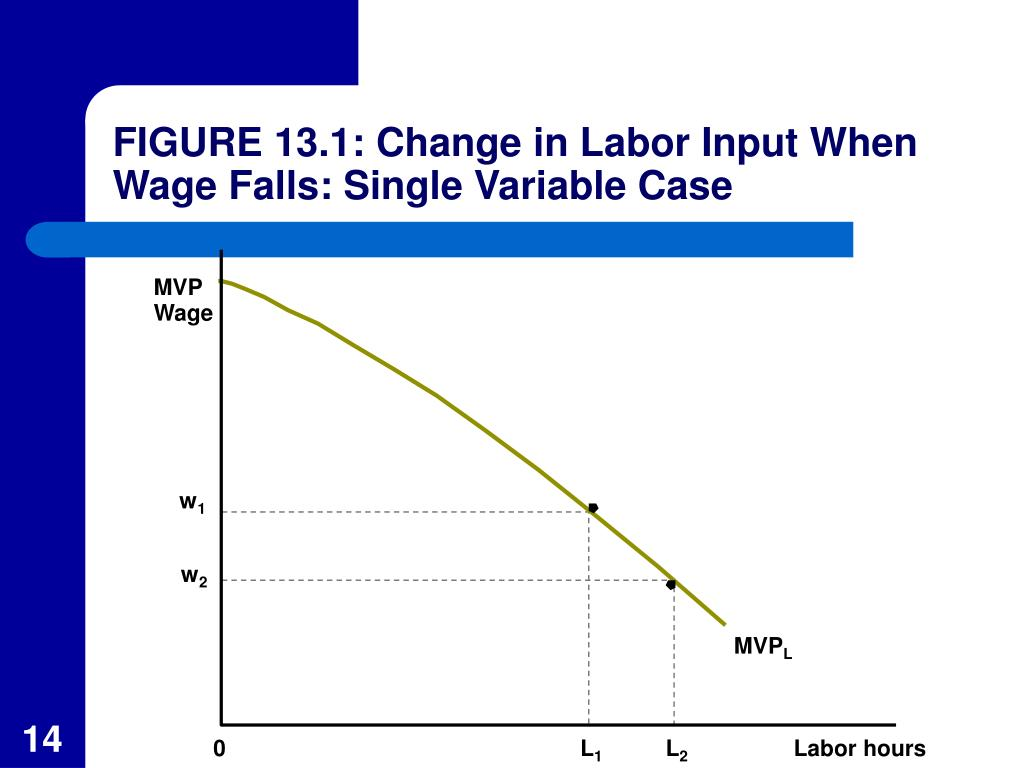 FIGURE 13.1: Change in Labor Input When Wage Falls: Single Variable Case