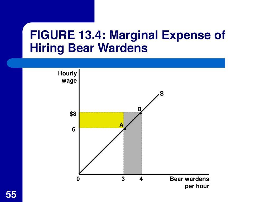 FIGURE 13.4: Marginal Expense of Hiring Bear Wardens