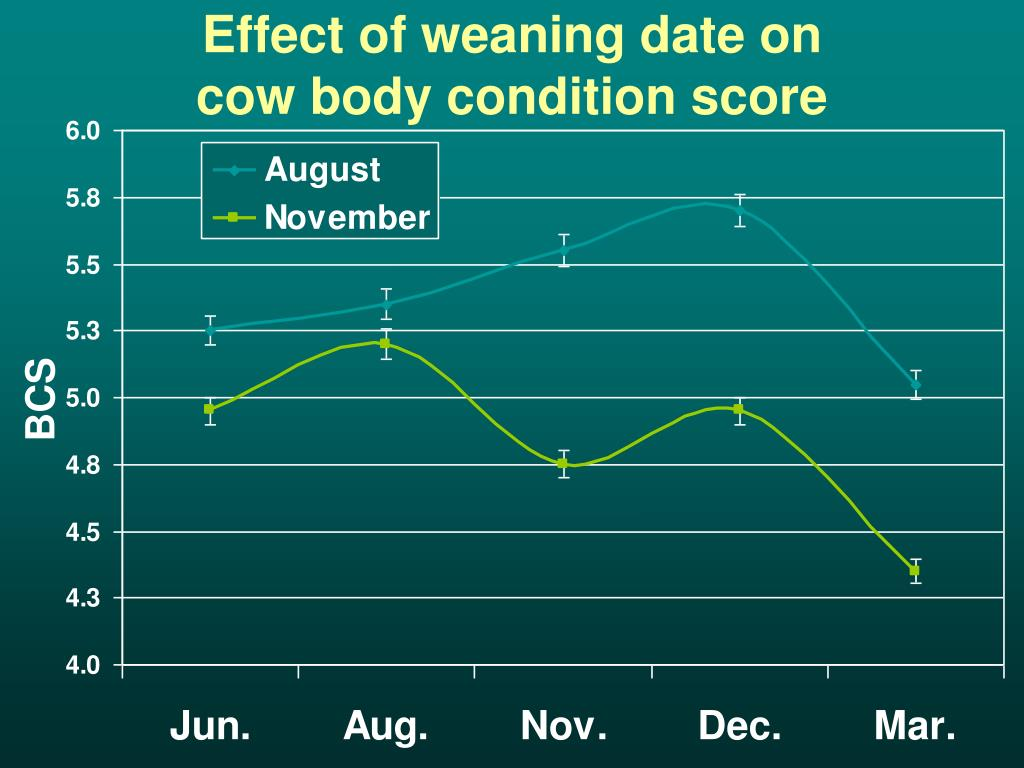 Effect of weaning date on