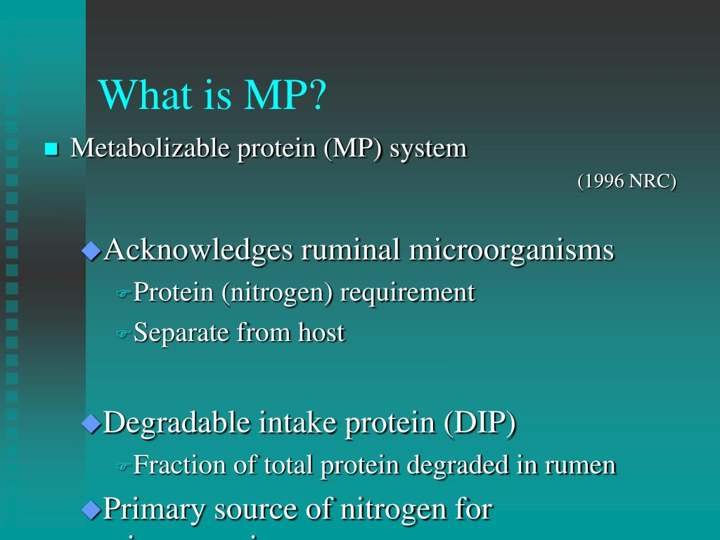 What is MP?