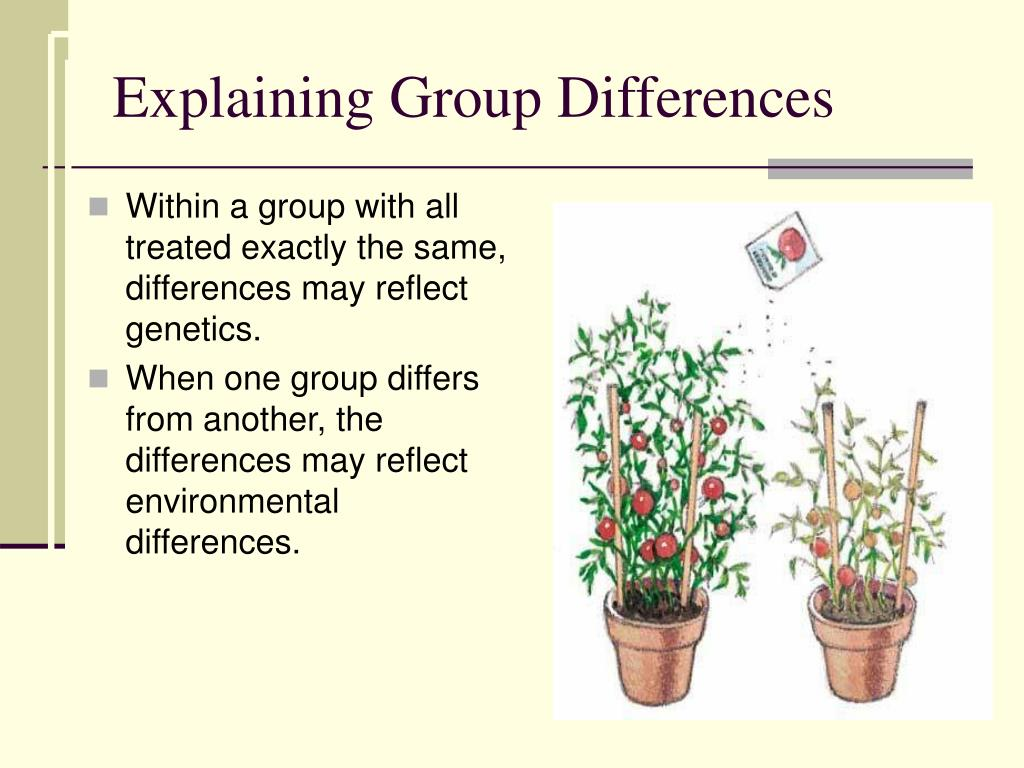 Explaining Group Differences