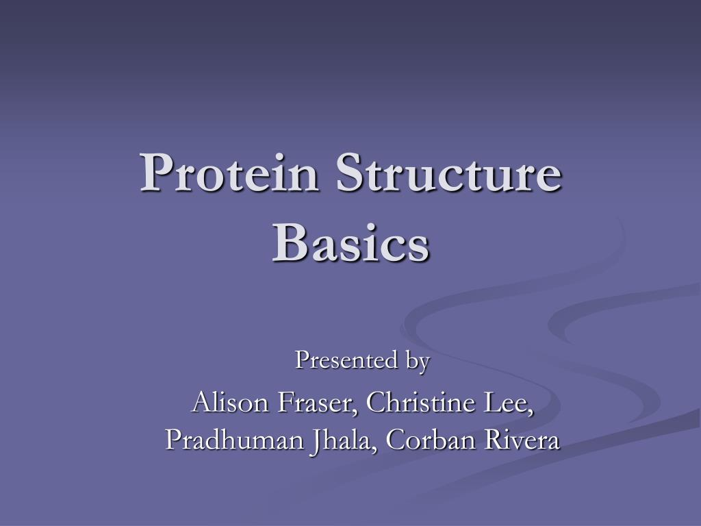 protein structure basics l.