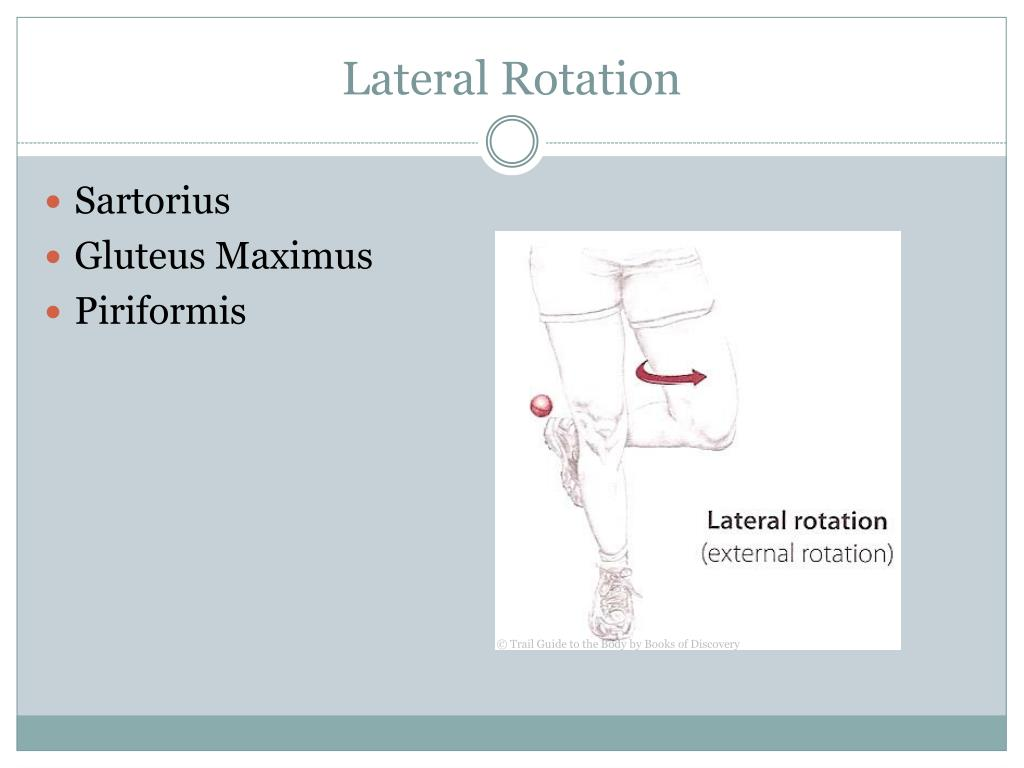 Lateral Rotation