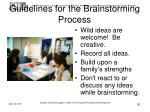 guidelines for the brainstorming process26