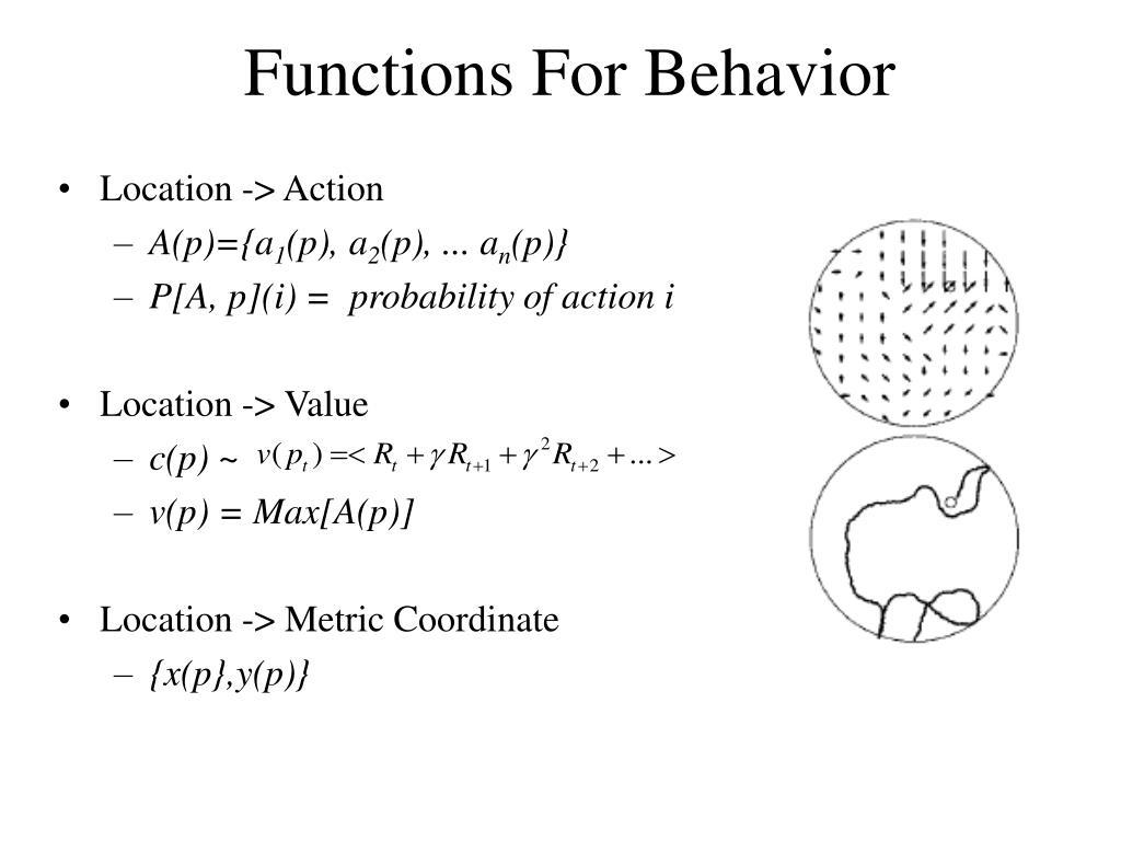Functions For Behavior