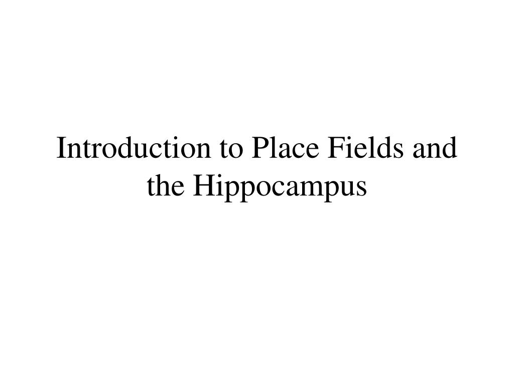 Introduction to Place Fields and the Hippocampus