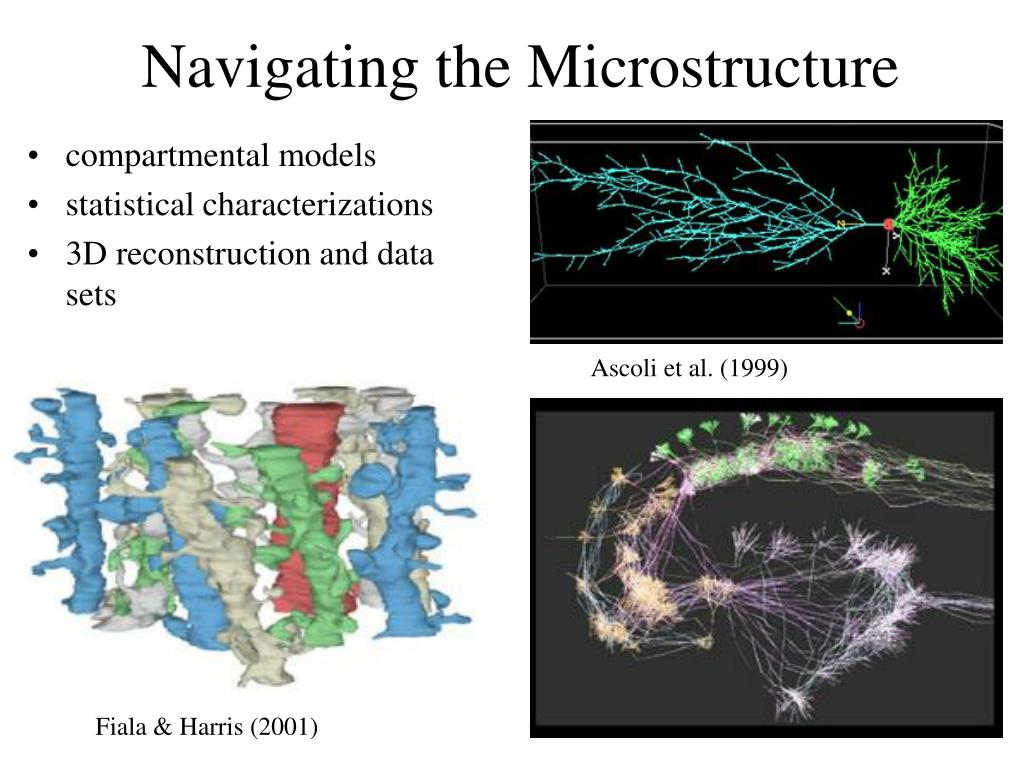 Navigating the Microstructure