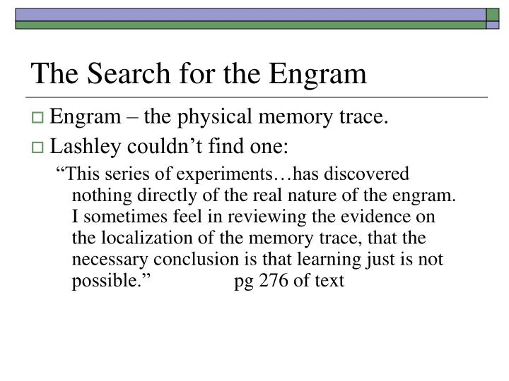 The search for the engram