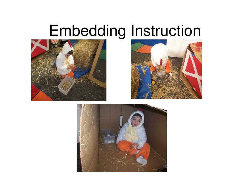 Embedding Instruction