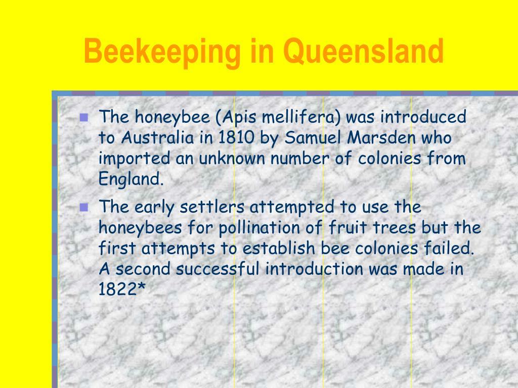 beekeeping in queensland l.