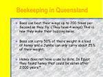 beekeeping in queensland13