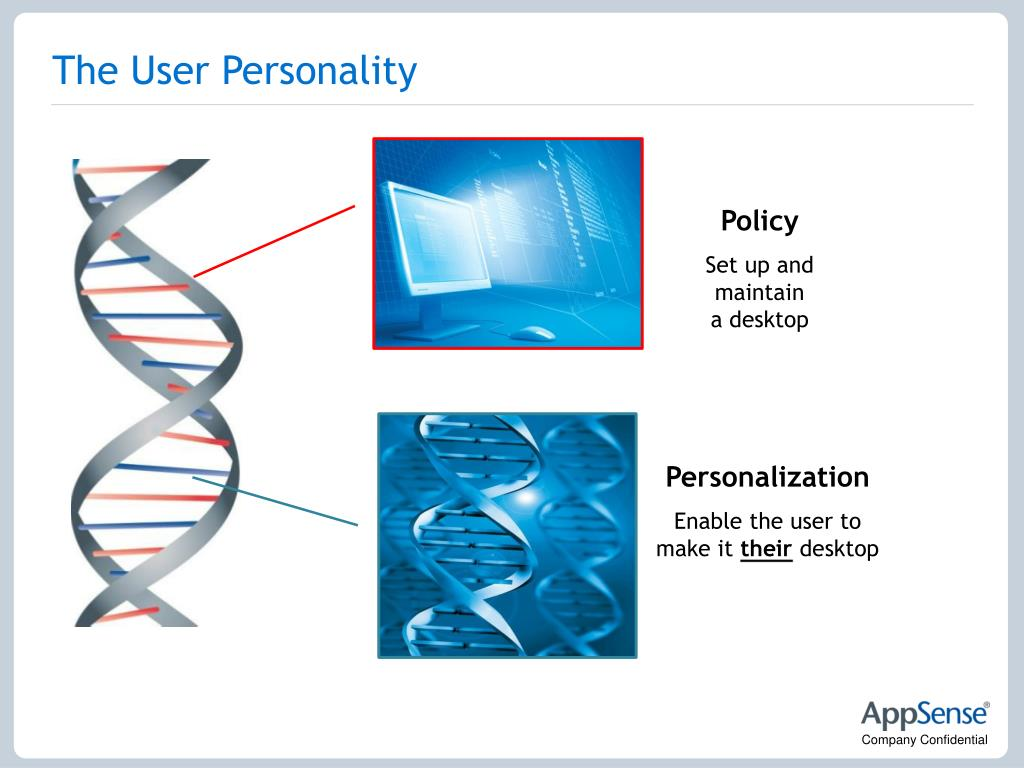 The User Personality