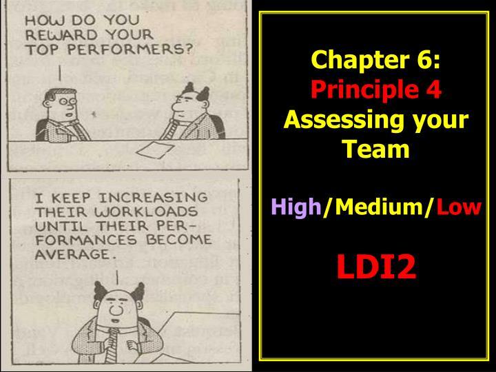 chapter 6 principle 4 assessing your team high medium low ldi2 n.