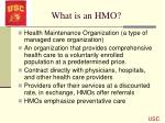 what is an hmo