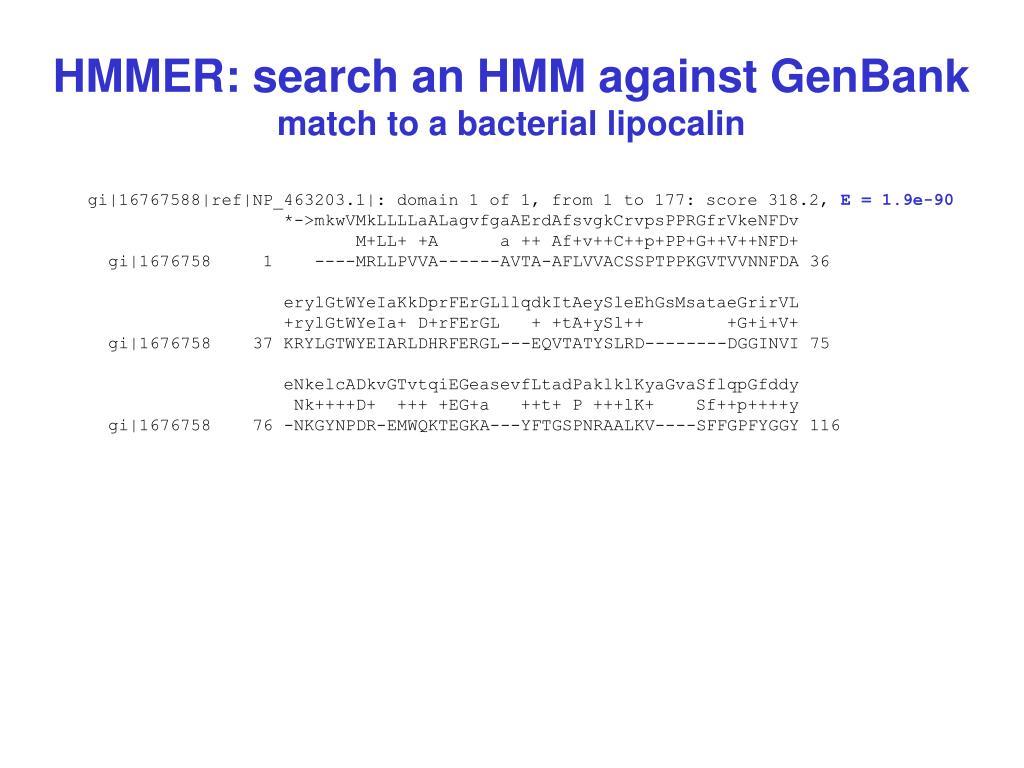 HMMER: search an HMM against GenBank