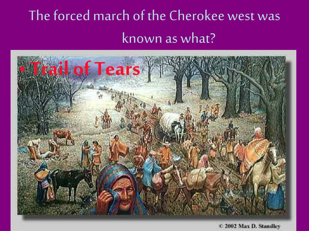 The forced march of the Cherokee west was known as what?