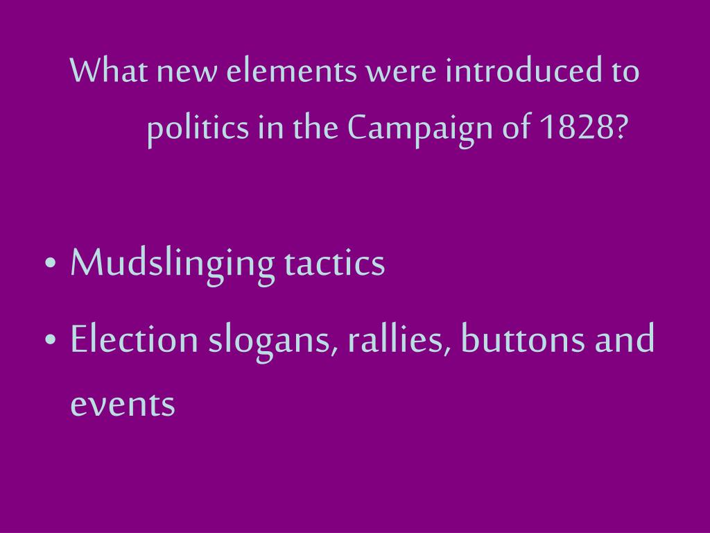 What new elements were introduced to politics in the Campaign of 1828?
