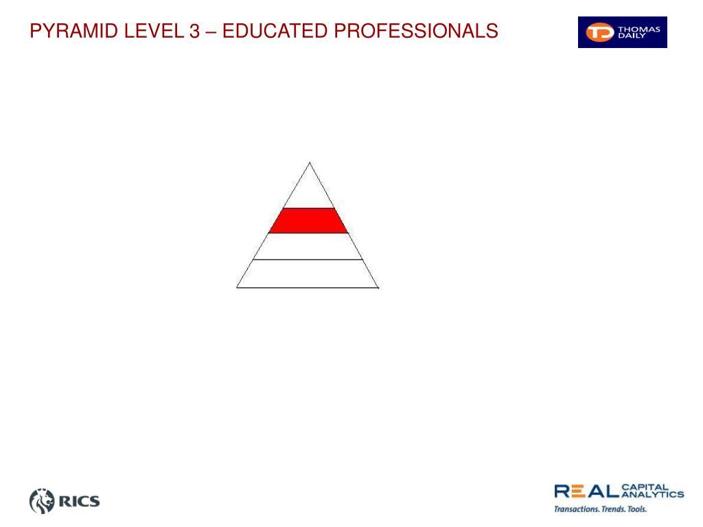 PYRAMID LEVEL 3 – EDUCATED PROFESSIONALS