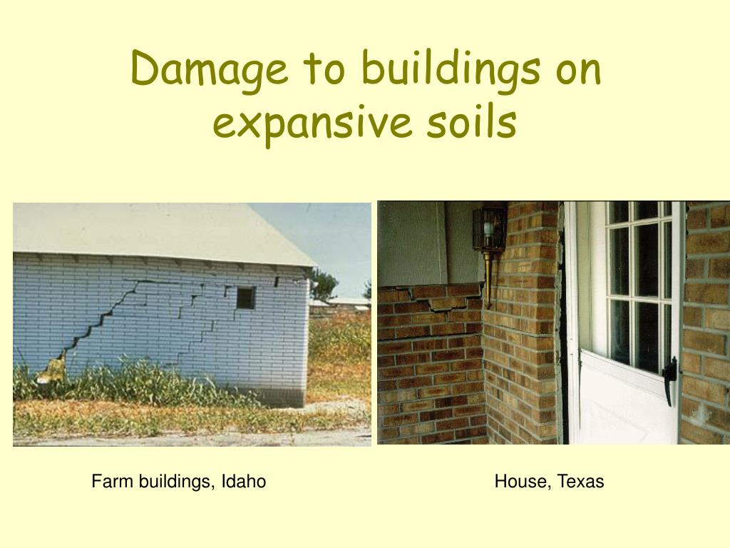Damage to buildings on expansive soils