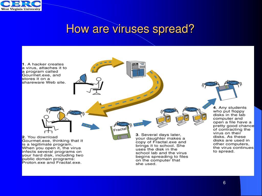 How are viruses spread?