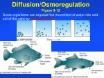 diffusion osmoregulation figure 9 12