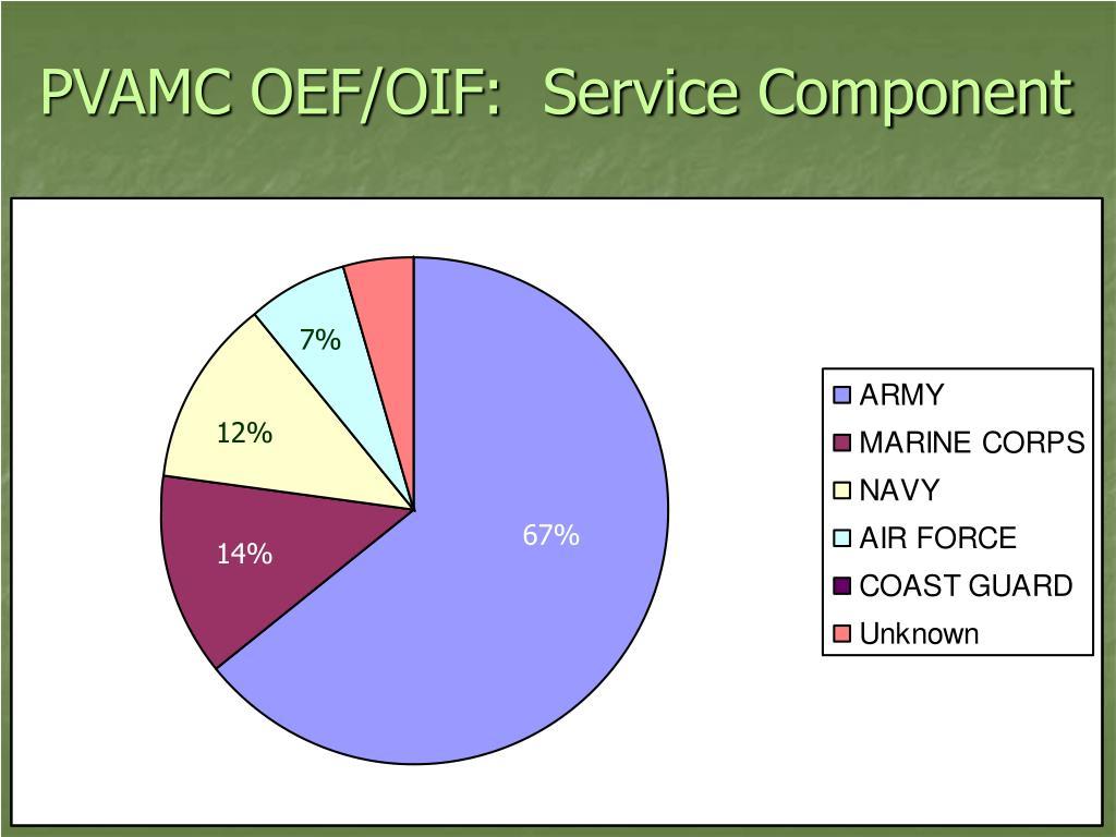 PVAMC OEF/OIF:  Service Component