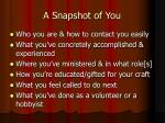 a snapshot of you