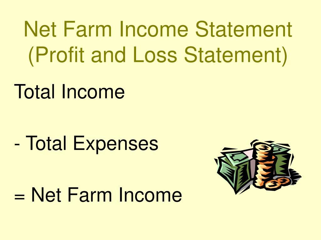 Net Farm Income Statement