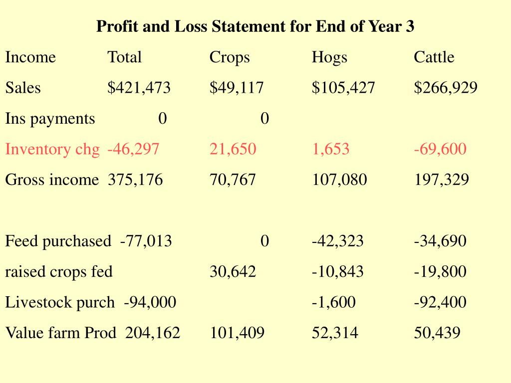Profit and Loss Statement for End of Year 3