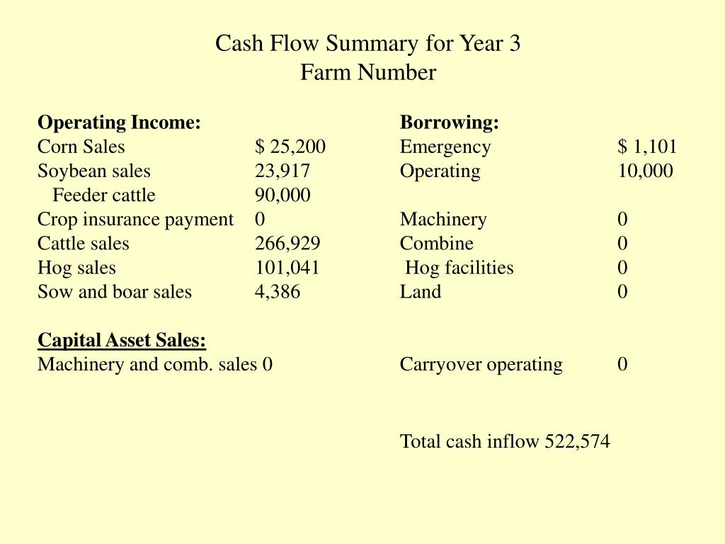 Cash Flow Summary for Year 3
