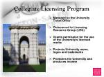 collegiate licensing program