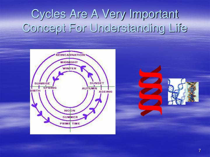 Cycles Are A Very Important Concept For Understanding Life