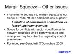 margin squeeze other issues