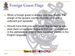 foreign guest flags